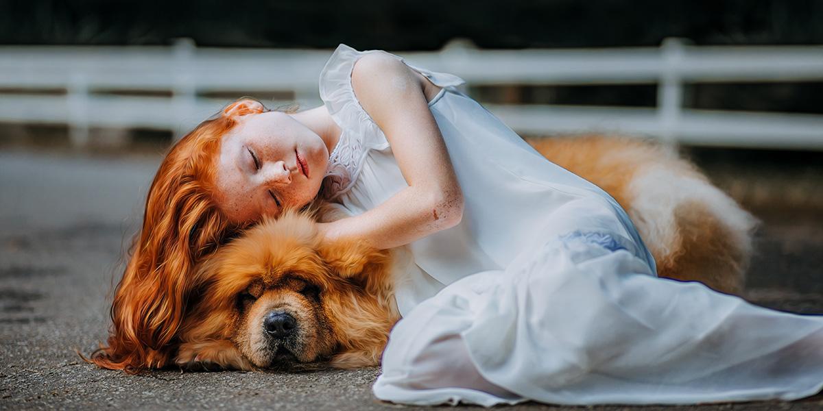 Así funciona el amor en las mascotas